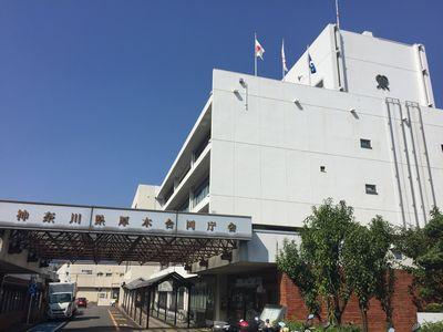 本厚木市役所.JPG