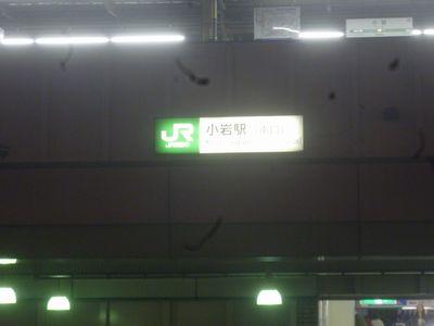 P1020197.JPG